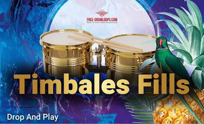 Picture of Timbales fills in 115 bpm