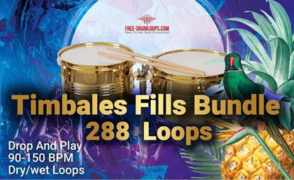 Picture of Timbales Fill's Bundle